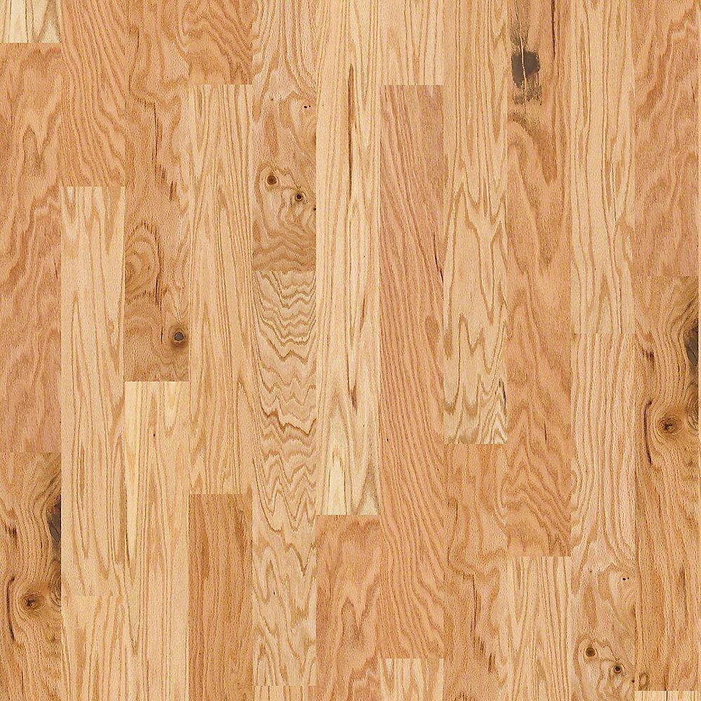 take home sample bradford oak natural oak engineered hardwood flooring 5 in x