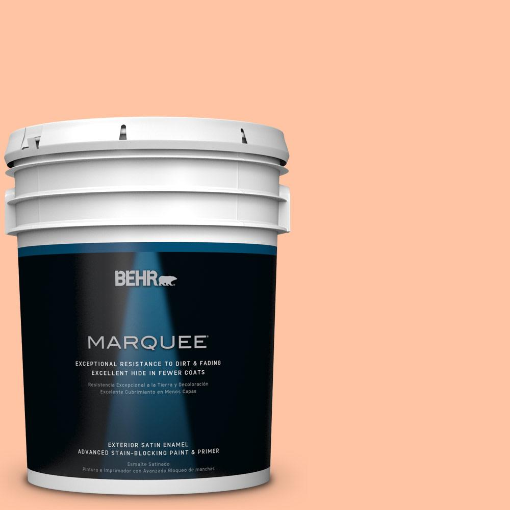 5-gal. #P200-3 Tomorrow's Coral Satin Enamel Exterior Paint