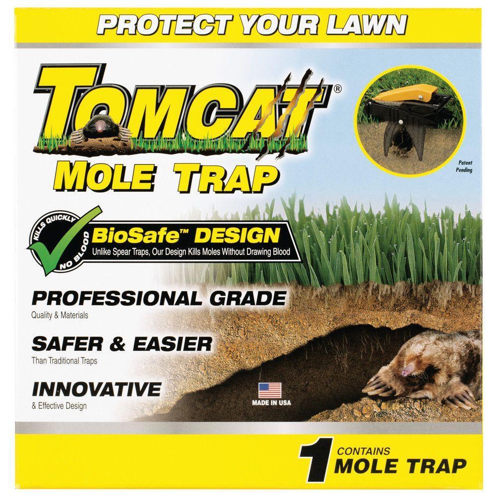 Tomcat Mole Trap