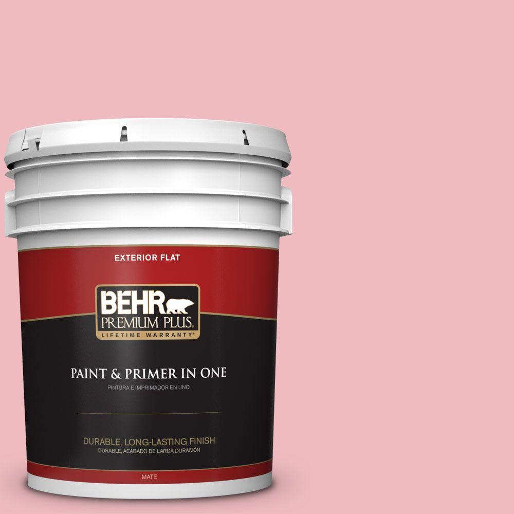 BEHR Premium Plus 5-gal. #P160-2 Blush Rush Flat Exterior Paint