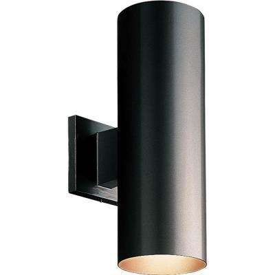 Outdoor wall mounted lighting outdoor lighting the home depot 2 light black integrated led outdoor wall mount cylinder light aloadofball Gallery