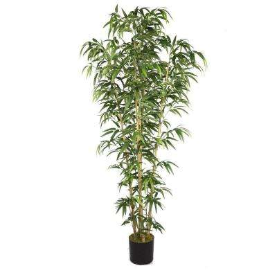 36 in. x 36 in. x 72 in. H Natural Bamboo Tree