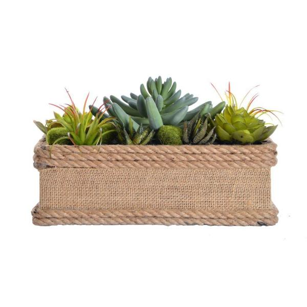 Laura Ashley 11.5 in. x 7 in. x 6.5 in. Tall Succulents in Hemp Rope Container