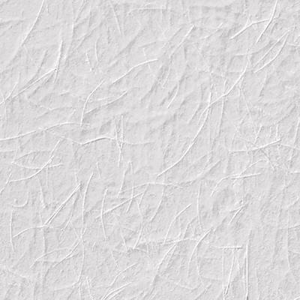 Wagtail Paintable Armadillo Wallpaper