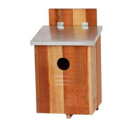 Redwood Screech Owl Bird House