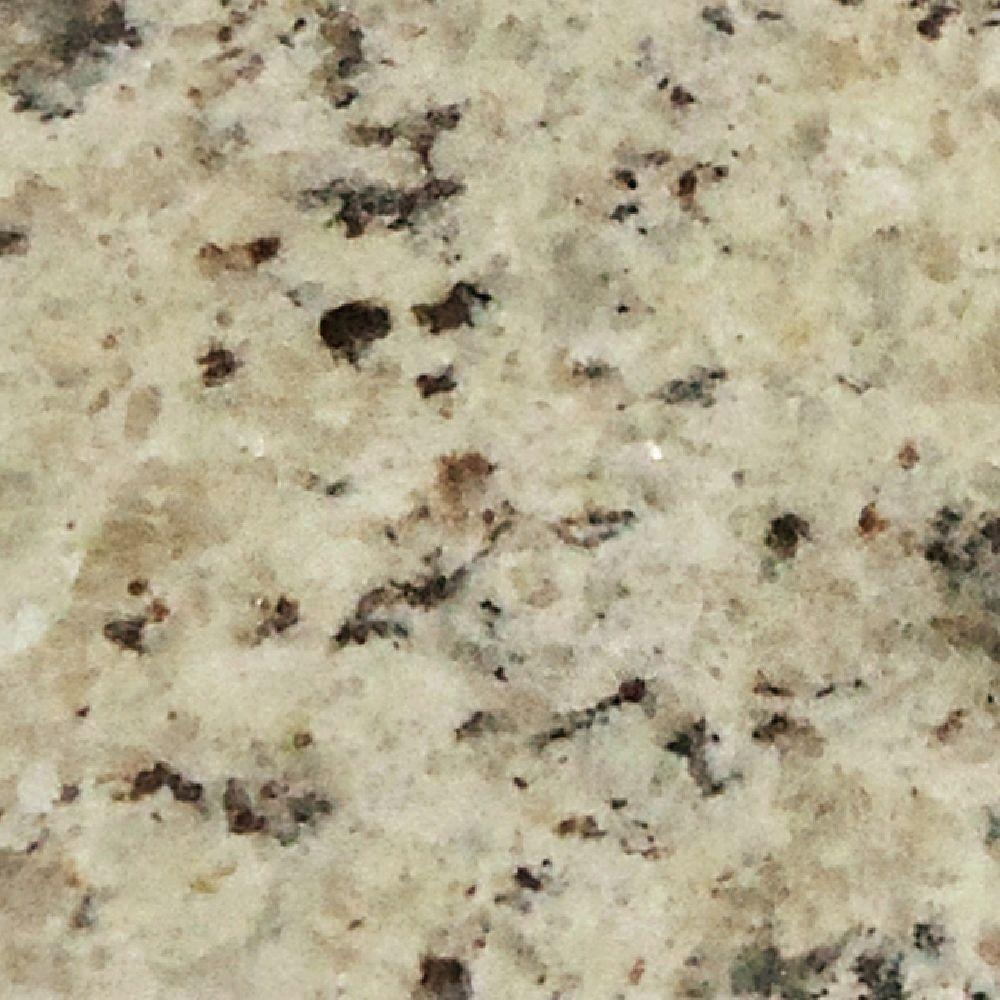 Pegasus 4 In. X 4 In. Giallo Ornamental Granite Sample