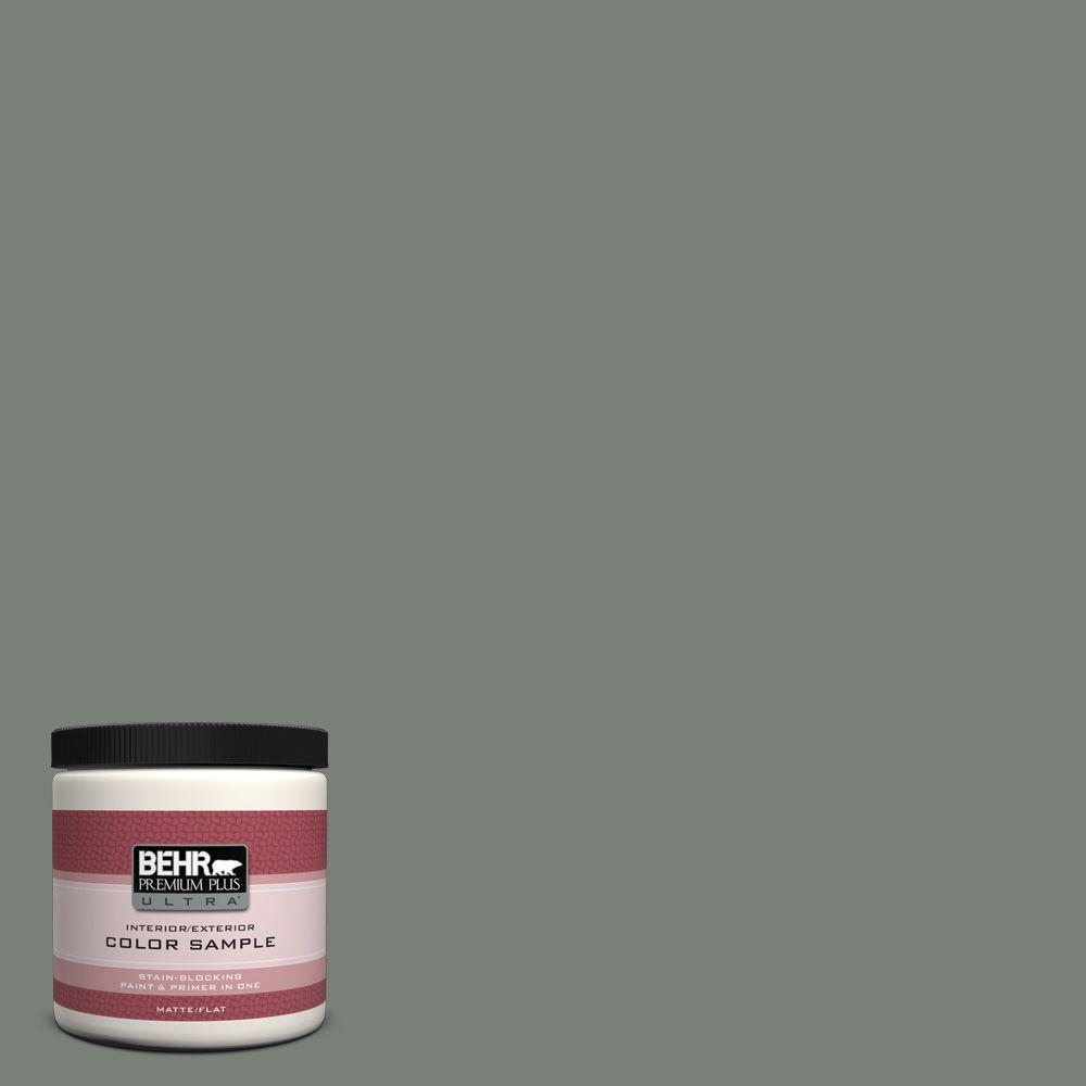 BEHR Premium Plus Ultra 8 oz. Home Decorators Collection Cedar Forest Interior/Exterior Paint Sample
