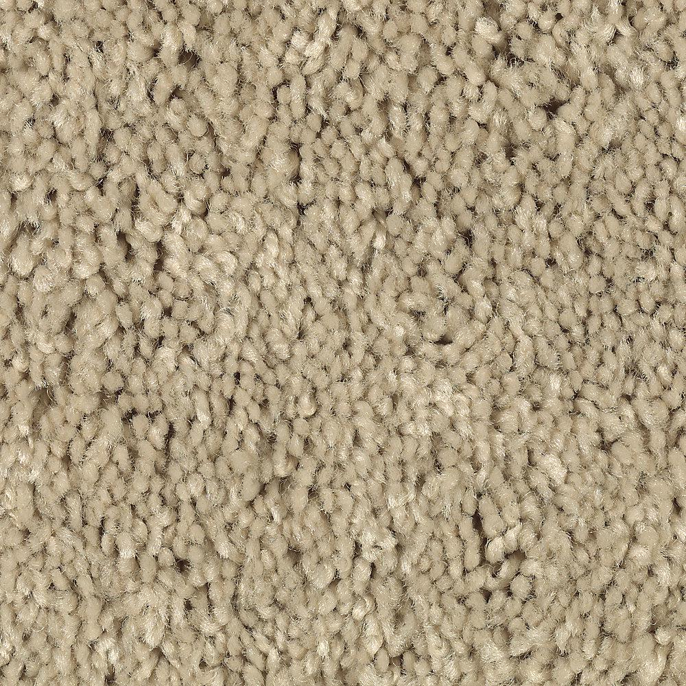 home decorators collection wholehearted home decorators collection carpet sample wholehearted ii 11482