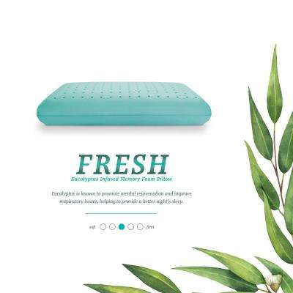 Fresh - Eucalyptus Infused Memory Foam Standard Pillow