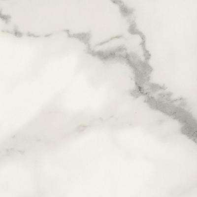5 in. x 7 in. Laminate Countertop Sample in 180fx Calacatta Marble with Etchings Finish