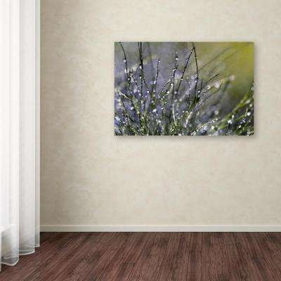 "12 in. x 19 in. ""Spring Morning"" by Beata Czyzowska Young Printed Canvas Wall Art"