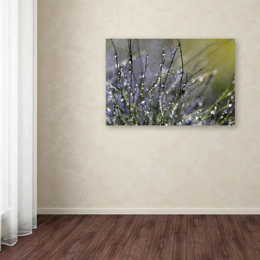 "16 in. x 24 in. ""Spring Morning"" by Beata Czyzowska Young"