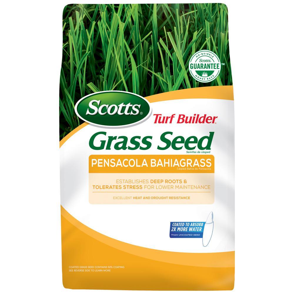 5 lbs. Turf Builder Bahia Pensacola Grass Seed
