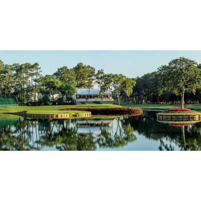 80 in. x 40 in. Sawgrass Golf Wall Mural