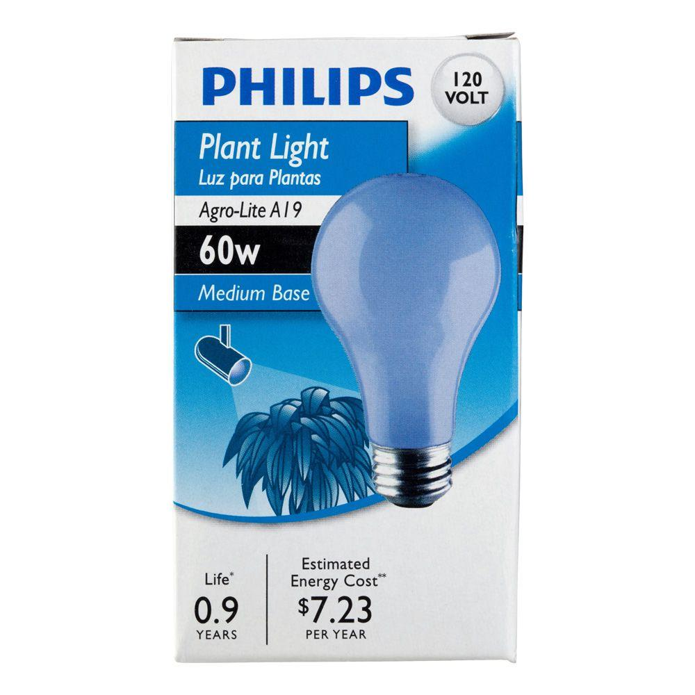 60 Watt A19 Dimmable Incandescent Agro