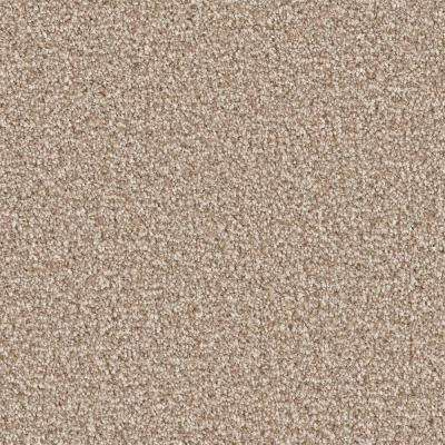 Carpet Sample - Palace II - Color Foster Texture 8 in. x 8 in.