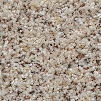 Carpet Sample - Grayson - Color Edgewood Texture 8 in. x 8 in.
