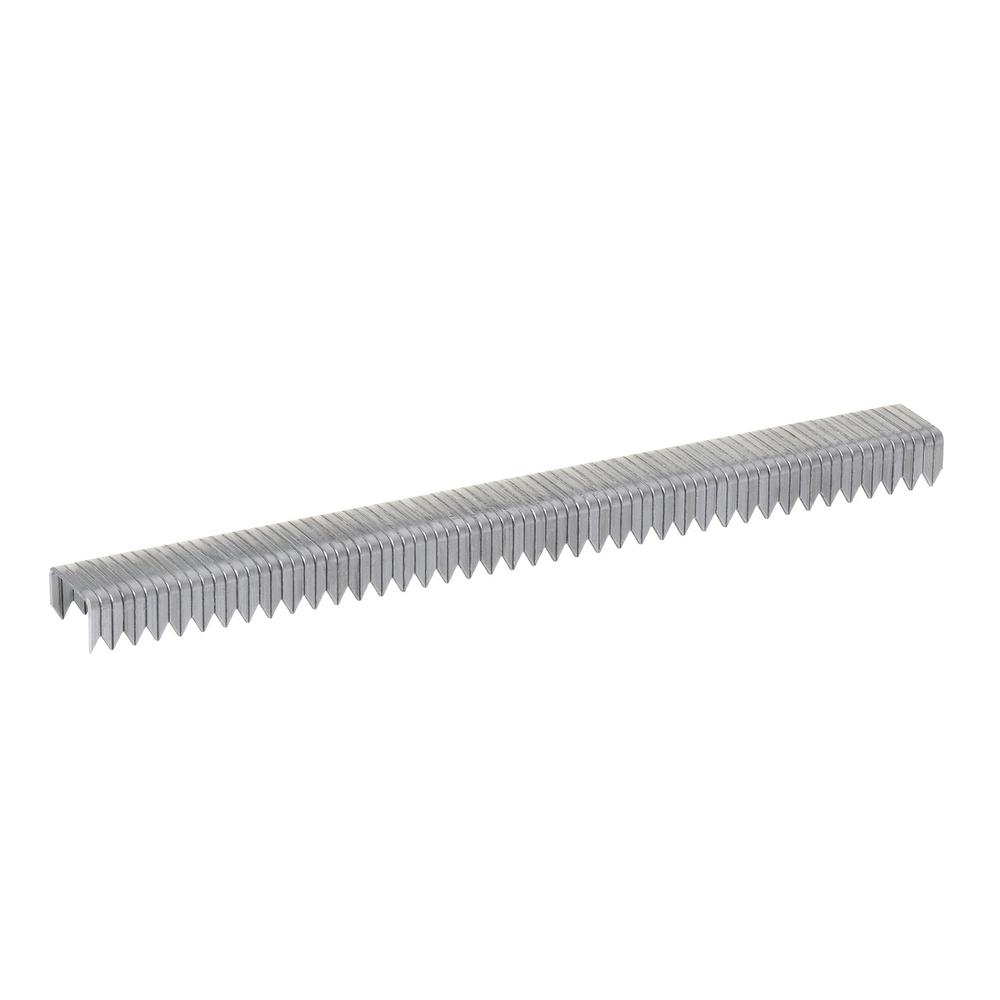 Arrow T50 1/4 in. Leg x 3/8 in. Crown Galvanized Steel Staples (1,250-Pack)
