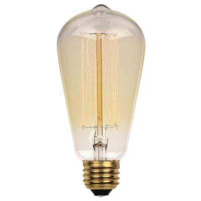 40-Watt Timeless Vintage Inspired Incandescent ST20 Light Bulb