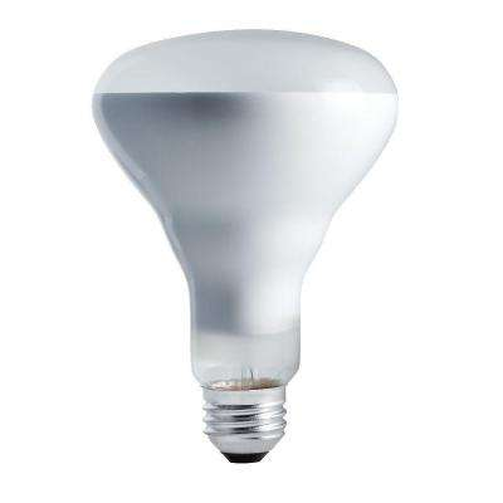 65-Watt 130-Volt Incandescent BR30 Flood Light Bulb (12-Pack)