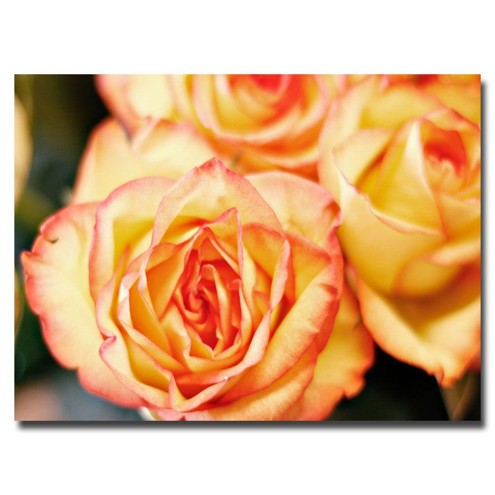 16 in. x 24 in. Roses Canvas Art