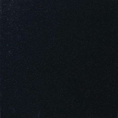 Absolute Black 12 in. x 12 in. Polished Granite Floor and Wall Tile (10 sq. ft. / case)