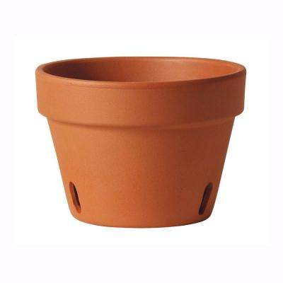 6 in. Clay Orchid Pot