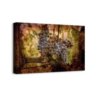 "25 in. x 16 in. ""Grapes au Bordeaux II"" Graphic Art Print on Canvas"