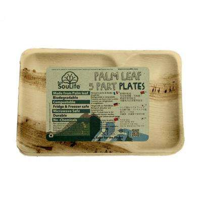 Natural Palm Leaf Rectangle Plate (20-Pack)
