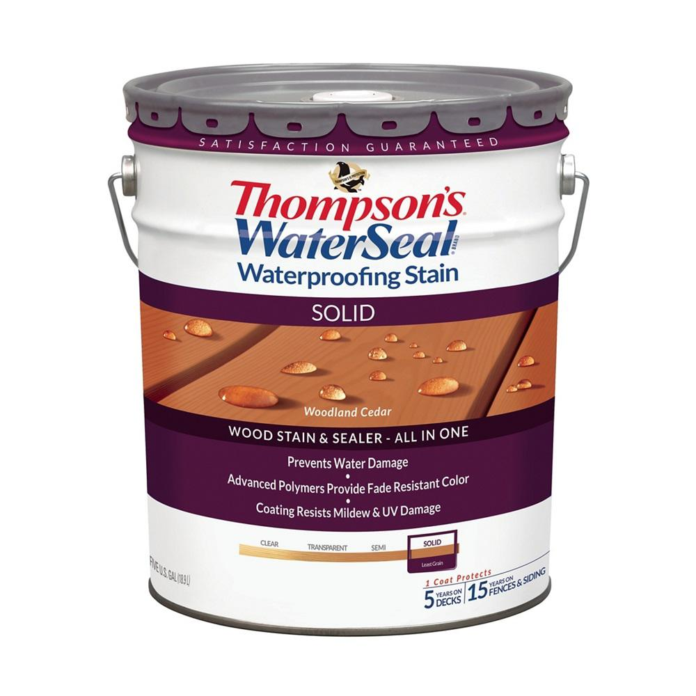 Thompson's WaterSeal 5 Gal. Solid Woodland Cedar