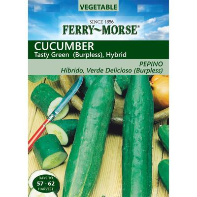 Cucumber Tasty Green Seed