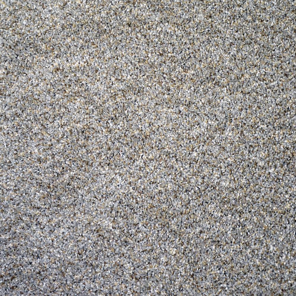 Carpet Sample-Thoroughbred ll -Color Morgan Texture 8 in ...