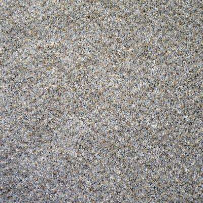 Carpet Sample-Thoroughbred ll -Color Morgan Texture 8 in. x 8 in.
