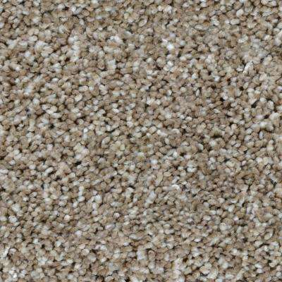Trendy Threads III - Color Meridian Texture 12 ft. Carpet