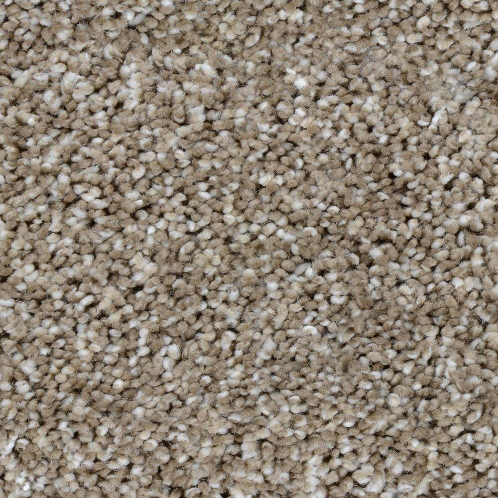 Trendy Threads III - Color Meridian Texture 12 ft. Carpet