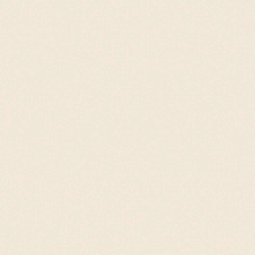 Wilsonart 48 in. x 96 in. Laminate Sheet in Light Beige with Standard Matte Finish
