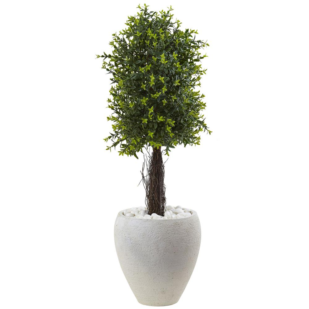 40 in. Ixora Topiary with White Planter UV Resistant (Indoor/Outdoor)