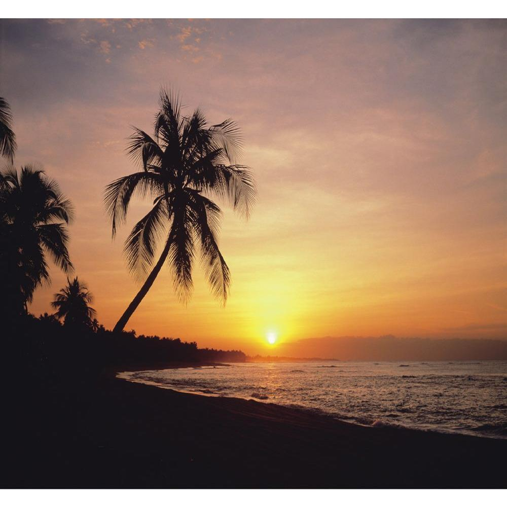 null Washington 150 in. x 108 in. Tropical Sunset Wall Mural