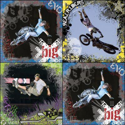 X-Games 11.5 in. x 18 in. Multicolored Extreme Sport 4-Piece Wall Decal-DISCONTINUED