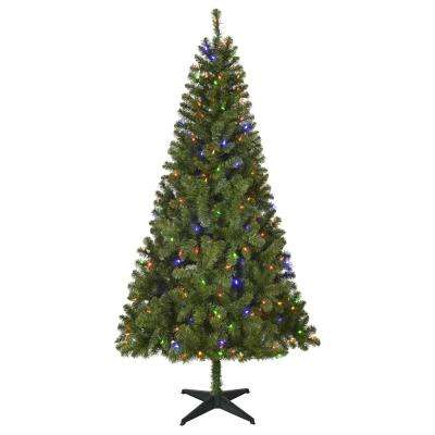 pre lit led festive pine artificial christmas tree with 250 multi - 65ft Christmas Tree