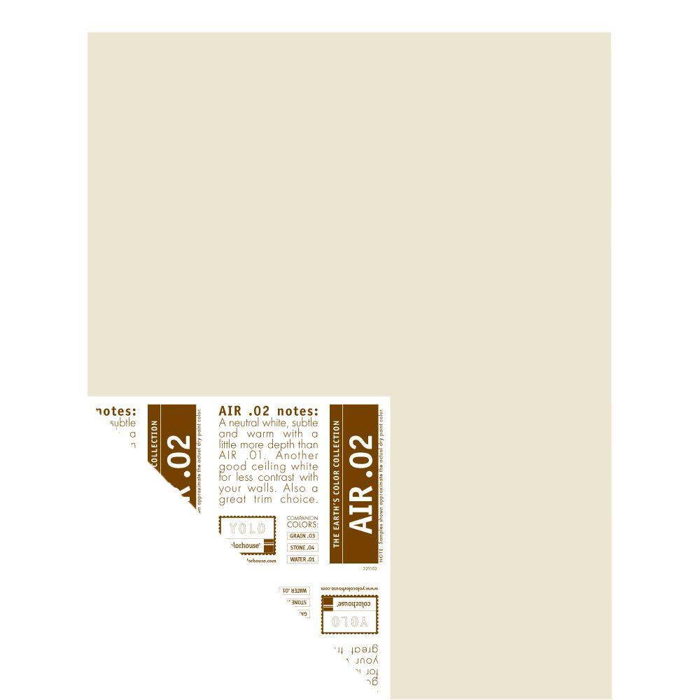 YOLO Colorhouse 12 in. x 16 in. Air .02 Pre-Painted Big Chip Sample
