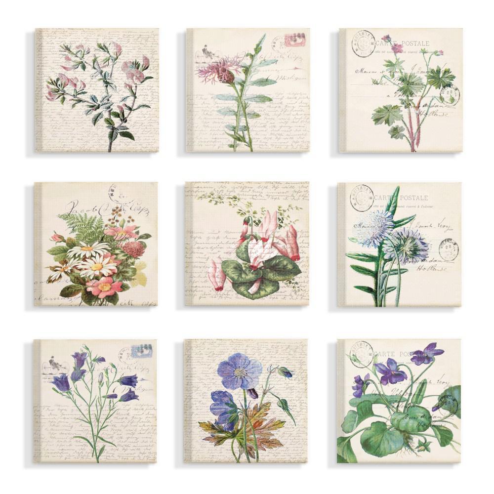 "12 in. x 12 in. ""Vintage Postcard Script Flower Illustrations"" by Daphne Polselli Canvas Wall Art (9-Piece)"