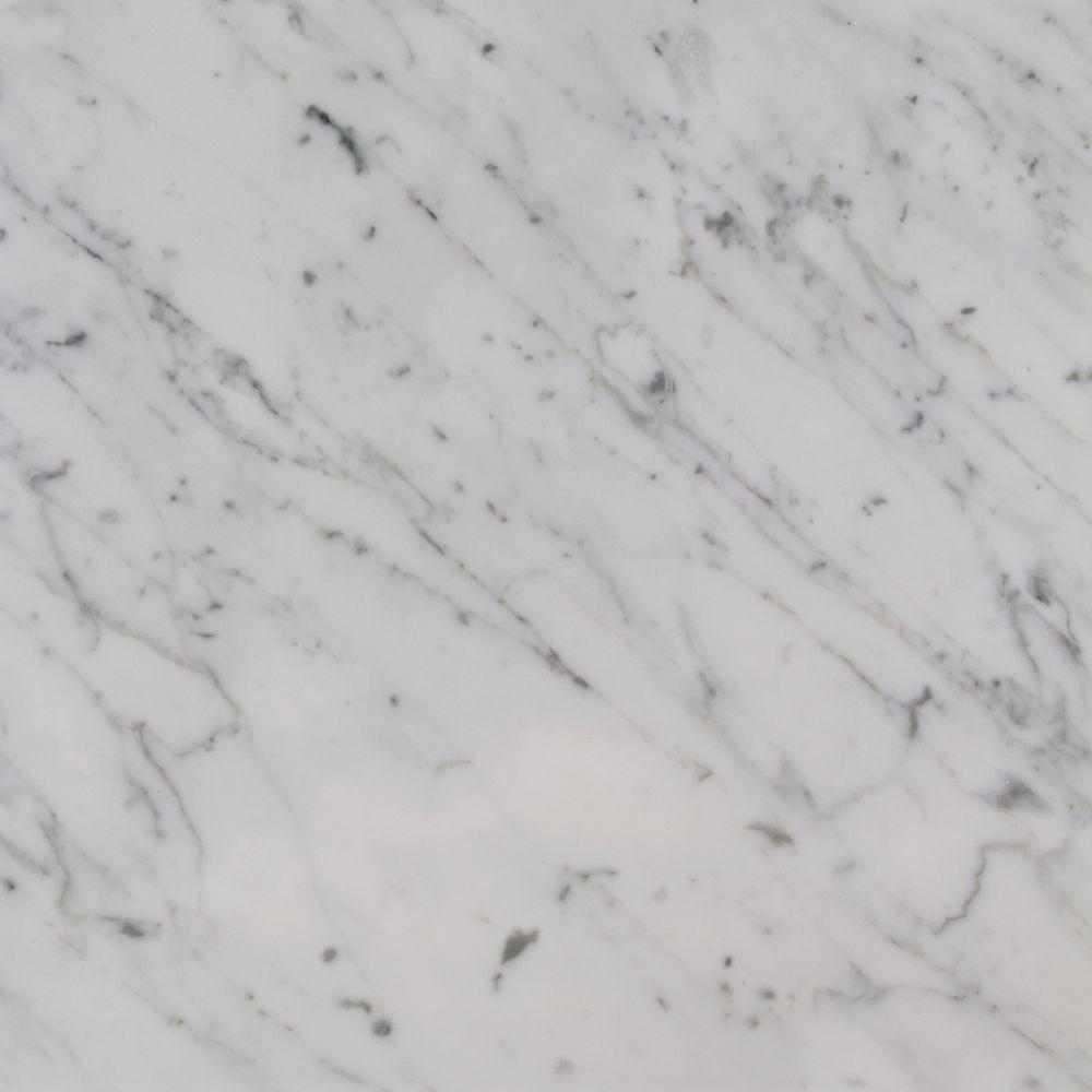 Foremost Zen 4 In X 4 In Marble Top Sample In Carrara White Zet001 The Home Depot