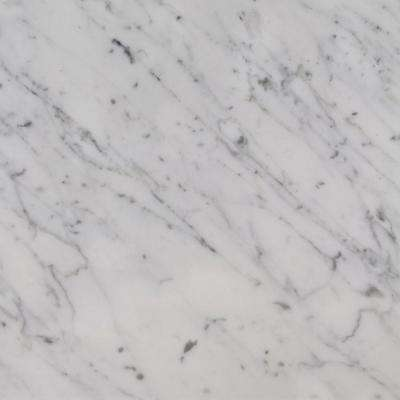 Zen 4 in. x 4 in. Marble Top Sample in Carrara White