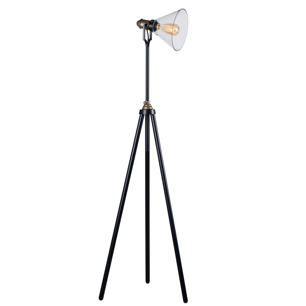 Outlook 49 in. Bronze Floor Lamp with Clear Glass Shade