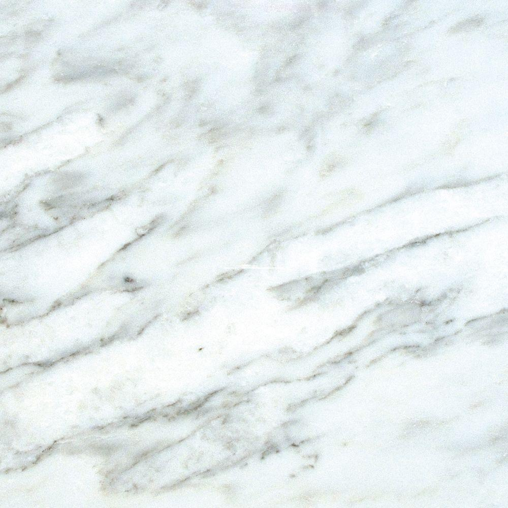 Msi greecian white 18 in x 18 in honed marble floor and wall honed marble floor and wall tile dailygadgetfo Image collections