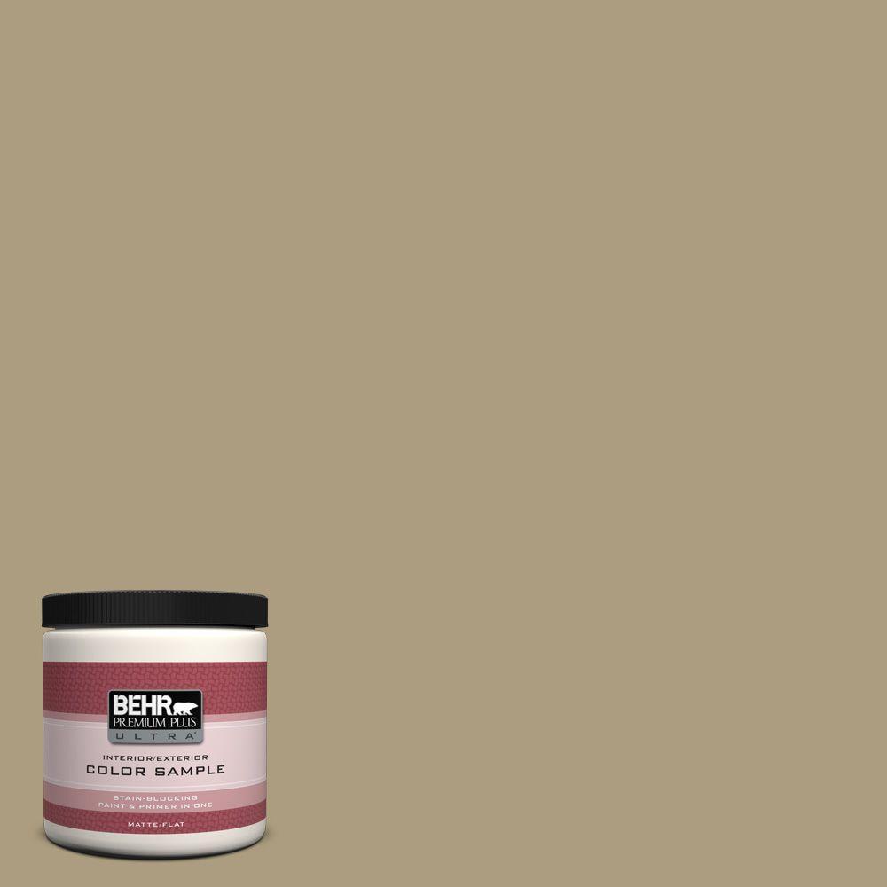 8 oz. #ECC-26-3 Cactus Hill Interior/Exterior Paint Sample