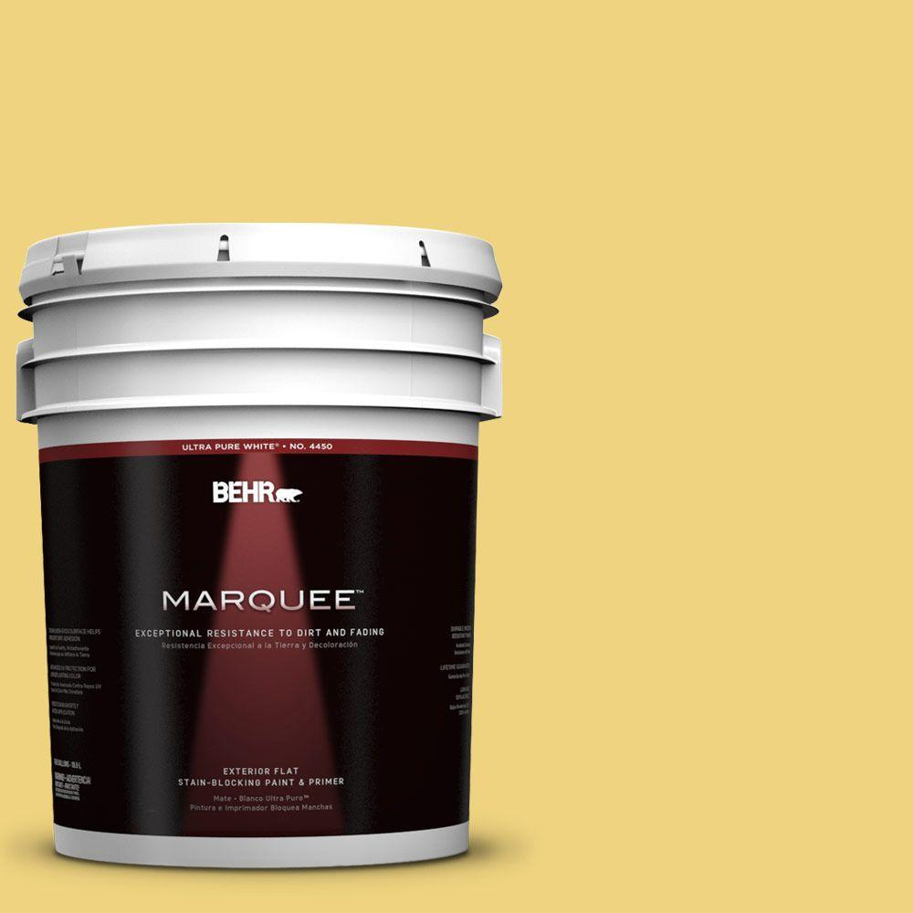 BEHR MARQUEE 5-gal. #380D-4 Feather Gold Flat Exterior Paint