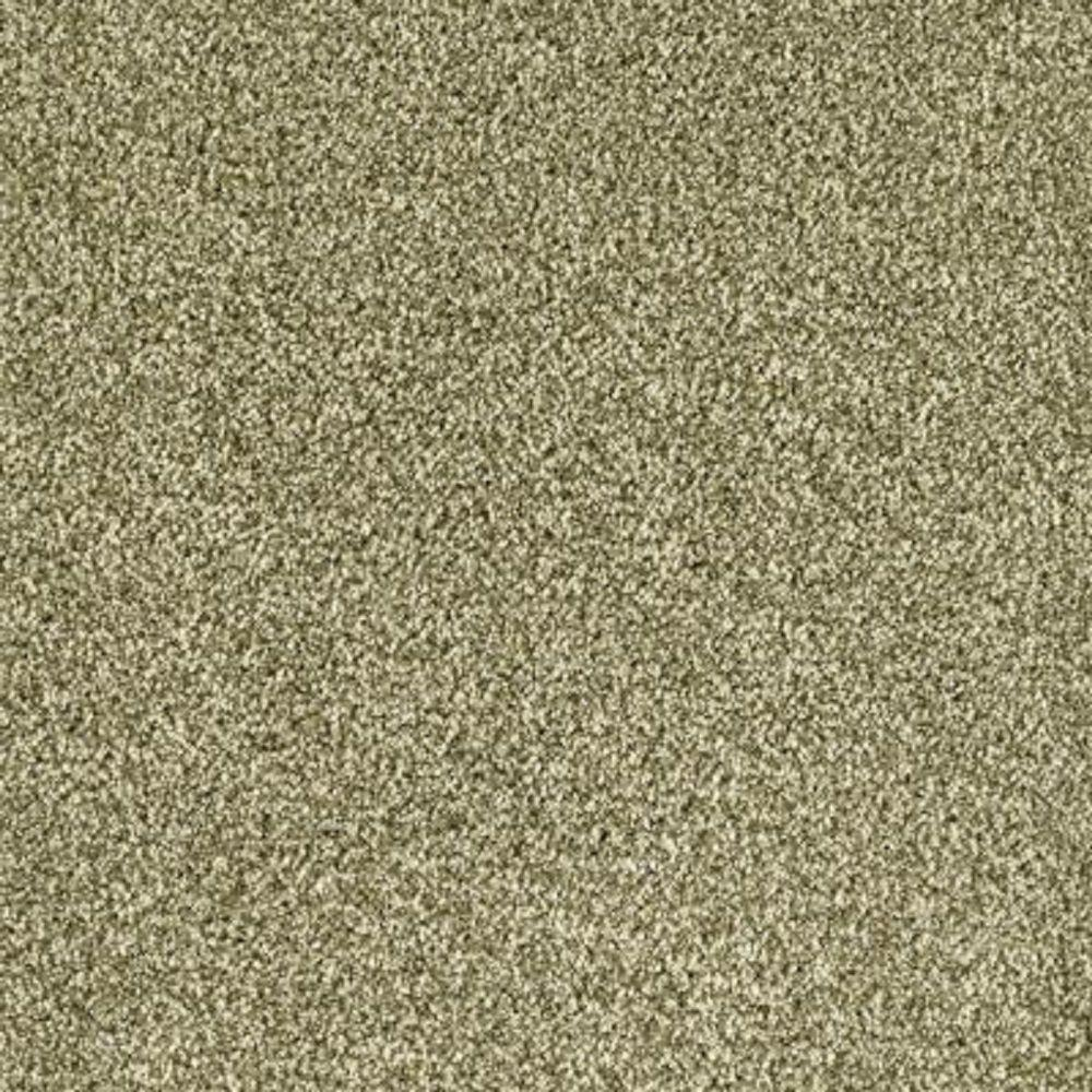 Carpet Sample - Lavish II - Color Alfalfa Sprout Texture 8