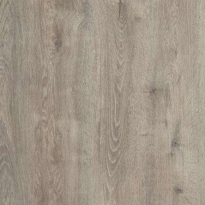 Take Home Sample - Biscayne Oak Luxury Vinyl Flooring - 4 in. x 4 in.